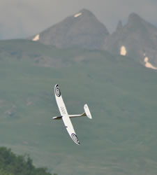 White glider, Seagull, banking towards the camera with mountains in the background