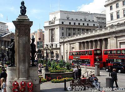 Bank Memorial Poppies