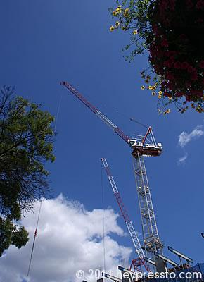 Crane at East Finchley