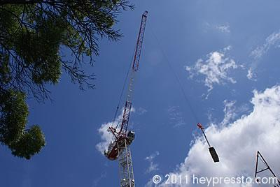 Crane with Load 2