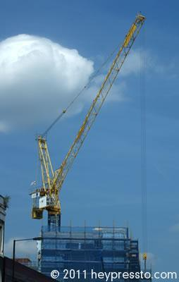 Yellow Crane with a White Cloud